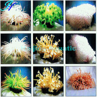 Haijing Artificial Coral Reef Aquarium Decoration