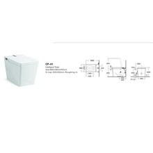 cp-01 Good Prices WC Bathroom P Trap Smart Toilet