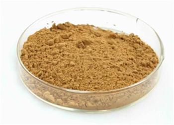 Natural Herb Extract Powder Made In China