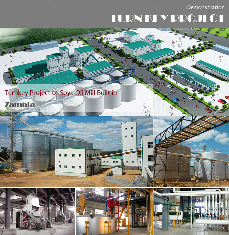 50 ton per day turnkey sunflower mustard neem castor cottonseed ginger soybean edible vegetable oil extraction plant