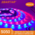 ws2812b LED strip online store 5m/roll indoor and out door