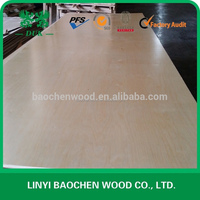 UV finished birch plywood manufactures export to Canada market