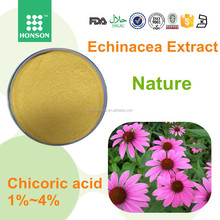 Powder raw material echinacea purpurea herb