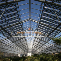 New Condition Photovoltaic Glass Greenhouses Mulit