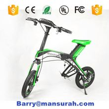 14inches city ebike 48v 250w,16inch New Folding Ebike,20inch folding ebike with 250W motor alloy frame