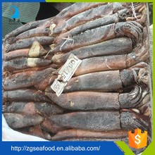 FDA Frozen Food and export seafood dried illex squid