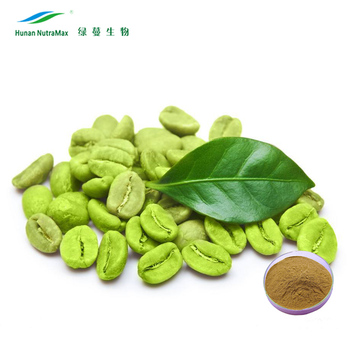 High Quality Green Coffee Bean Extract Total Chlorogenic acid 50%