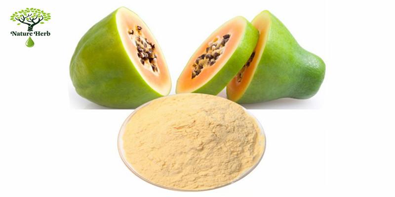 papaya powder7.jpg