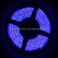 Super Big Price Flexible LED Strip Light