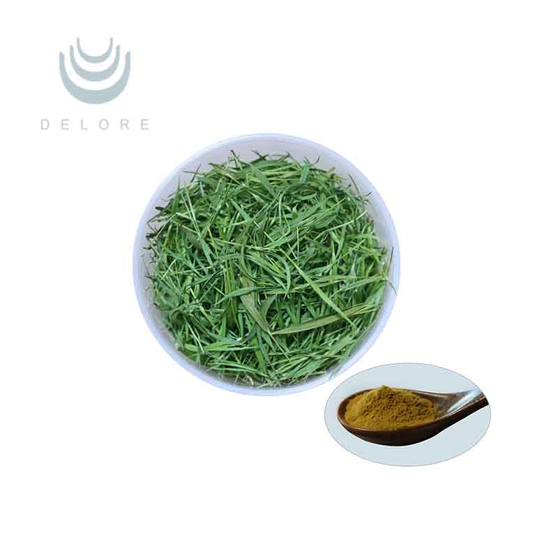 Natural organic green tea extract 98% Polyphenols 98% EGCG 80% Catechins