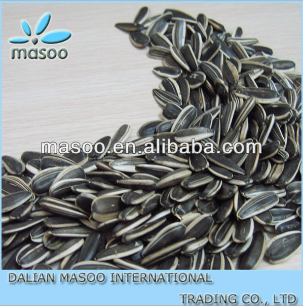 SIZE:5009 Chinese sunflower seeds