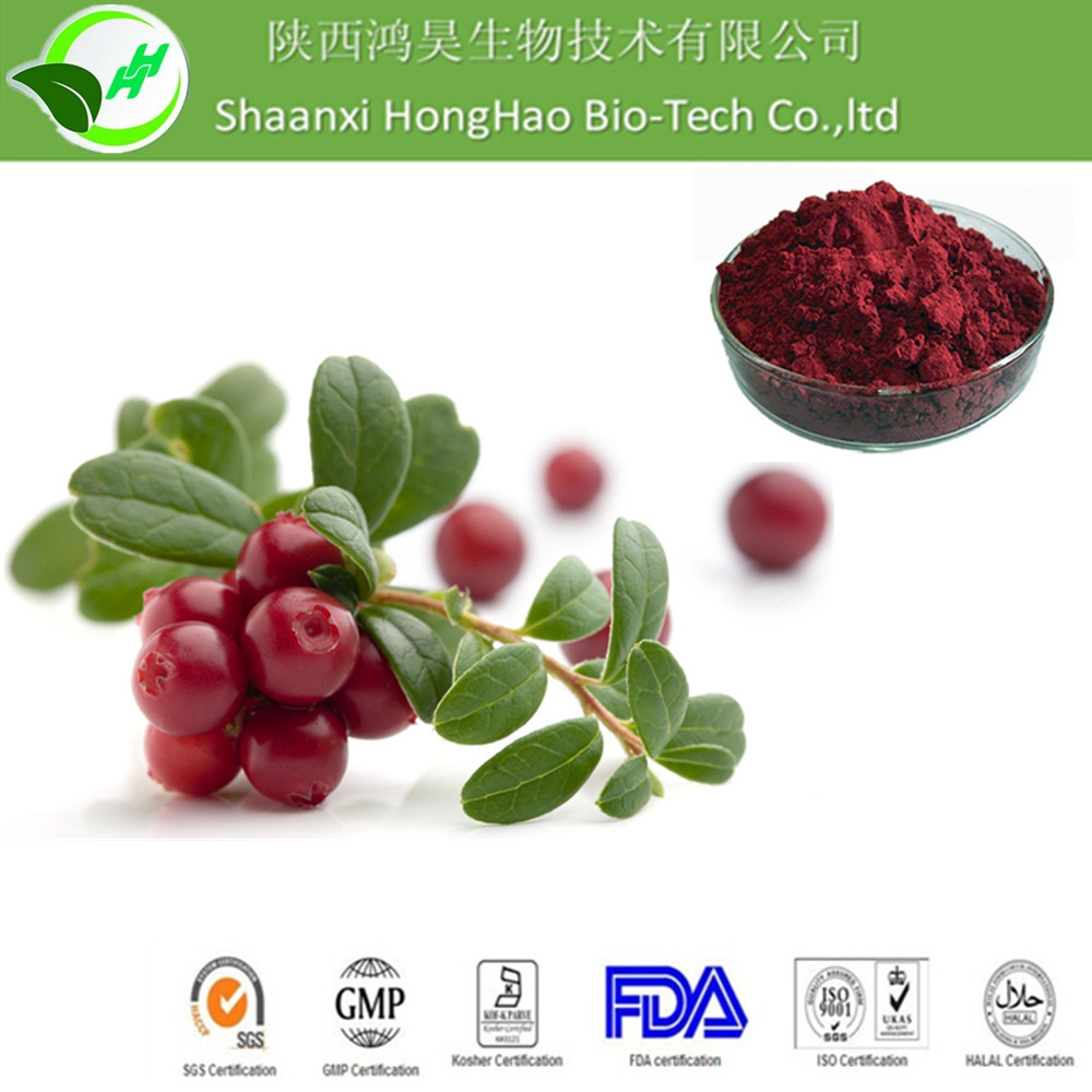Fresh Fruit For beverage S D cranberry powder in 2016 newal product