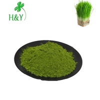 Nutrition supplement 100 mesh Wheat Grass powder with good water solubility
