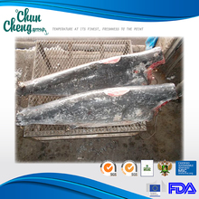 MS001 Frozen Moro Shark Dwt wholesale frozen seafood importers brands