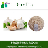Factory supply Garlic extract 100% pure nature extract powder with high quality