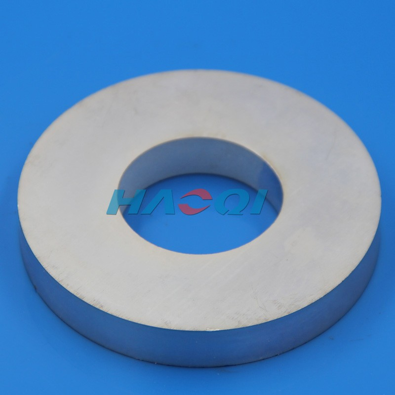 NdFeB rare earth permanent multipole ring magnet for motor