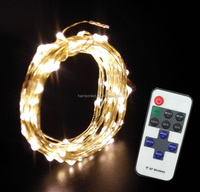 Hot selling remote control dimmer single color dimmable flash mode led blinking twinkle copper wire string lights