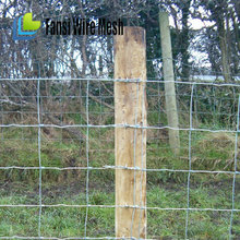 utility high quality sheep & goat long-lasting wire mesh lowe's field fence(2014 hot sale)