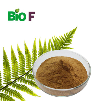 10%-50% Triterpene polypodium leucotomos/polypodium leucotomos extract/polypodium leucotomos extract powder