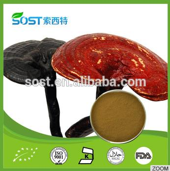 factory supply pure Natural Ganoderma lucidum Extract