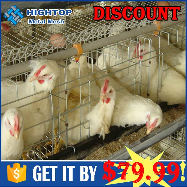 high quality indoor chicken laying egg cages