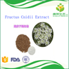 /product-detail/china-factory-supply-pure-natural-plant-extract-fructus-cnidii-powder-60531378620.html