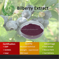 Natural Herb Fruit Powder Bilberry Extract