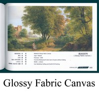 Roland printer Glossy Fabric Canvas print