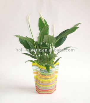 Clear plastic flower vases