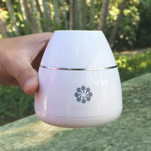 Portable Waterless Aroma Nebulizer Rechargeable Aromatherapy Essential Oil Diffuser