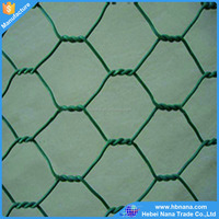 Galvanized / PVC coated hexagonal wire mesh home depot