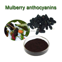 organic dried Mulberry Fruit Extract powder for beverage&cosmetics natural fruit extracts