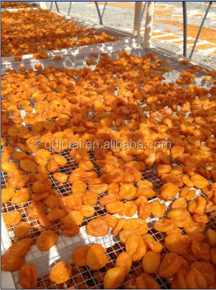 dried fresh seasoned apricot for sale