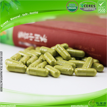New Life Become Distributor Export Import Green Tea Benefits Side Effects