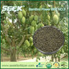 SEEK bamboo biochar bio-organic Fertilizer for Mango