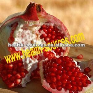 pomegranate plant extract contains Polyphenol 40% 80%