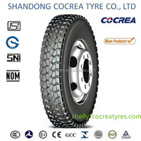 All steel Radial Truck tyre 7.00R16LT hot sale
