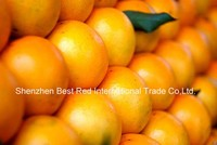 Fresh Orange/ Lianjiang red orange