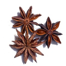 Top Quality 100% Natural Dehydrated Star Aniseed