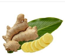 Best quality Ginger root extract