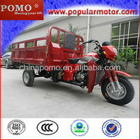2013 Hot New Popular Petrol Cargo 3 Wheel Electric Tricycle