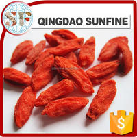 Hot sale Ningxia origin organic dried goji berries AAA grade
