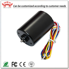 China Making 12V Brushless 12Mm Induction Dc Motor Prices