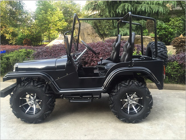 electric all terrain vehicle ( ATV)