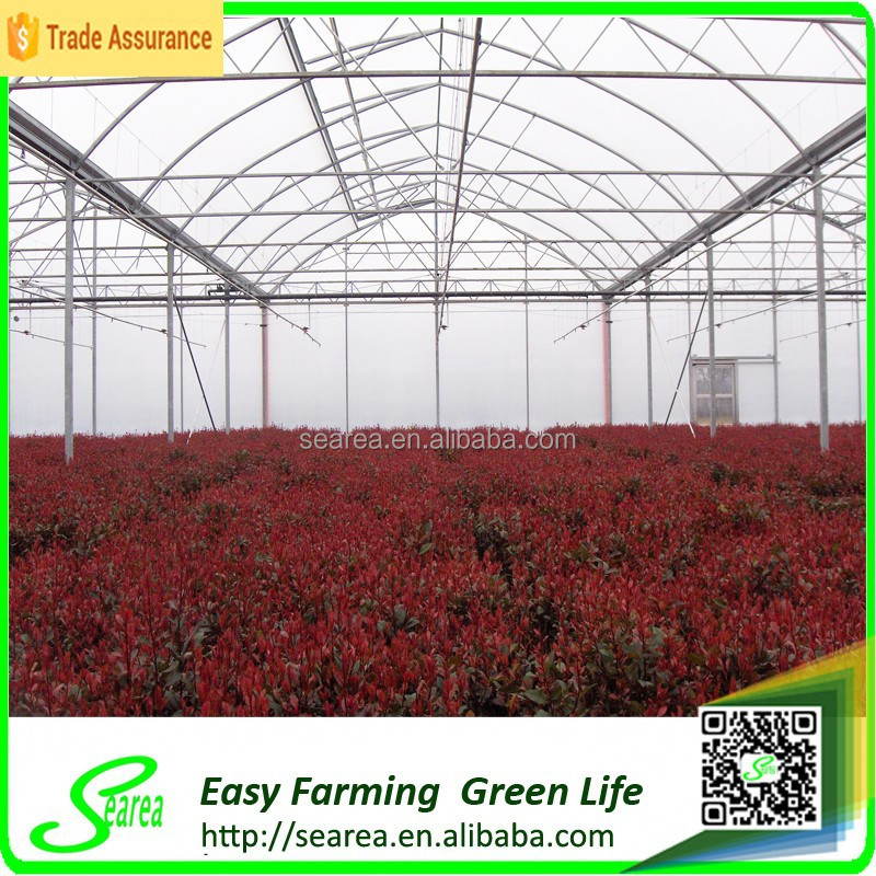 Strong windload greenhouse farming for sale