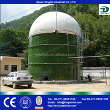 Biogas digester / generate electricity from waste