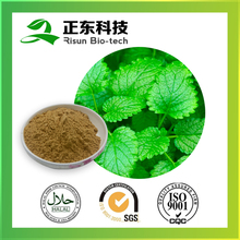 Organic Extraction Lemon Balm Extract 5% Flavone Powder