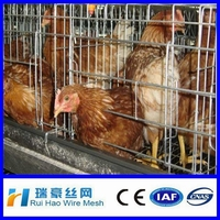 Chicken breeding cage broiler battery cage poultry battery cages
