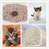 kitty sand/cat litter for sale