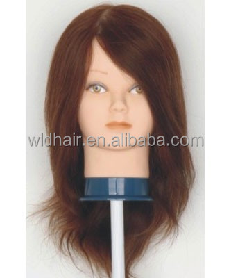 High quality Tangle-free Unprocessed 100 human hair mannequin head with human hair